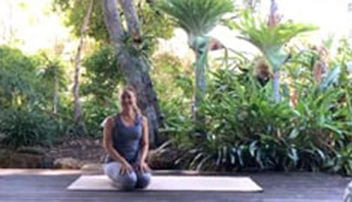 29 min Dynamic Vinyasa Yoga